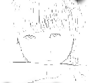 20121101-085055.jpg